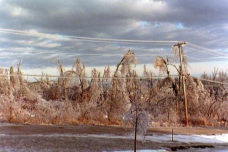 Damage done to power lines in 1998 ice storm
